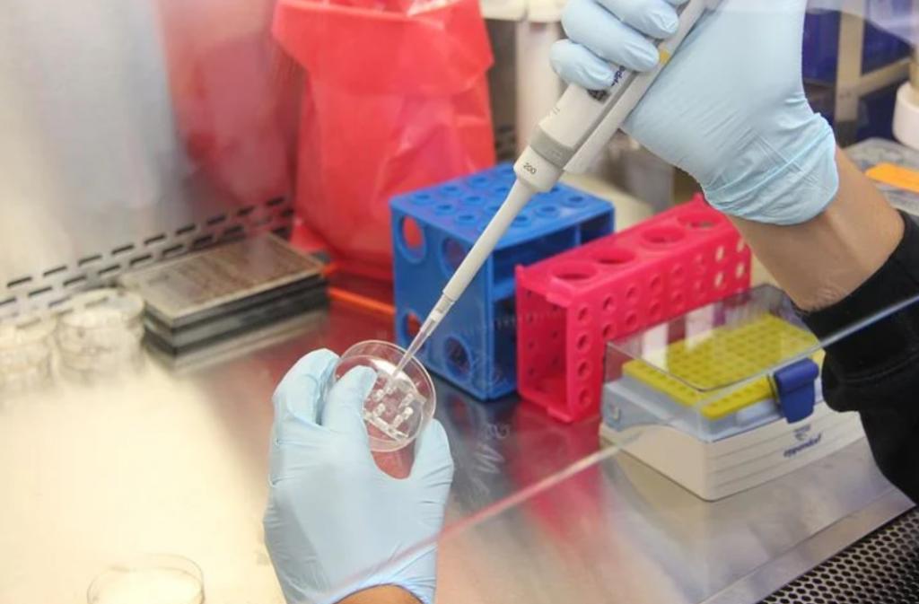 Ученые Национального исследовательского центра эпидемиологии и микробиологии имени Гамалеи разрабатывают вакцину от коронавируса