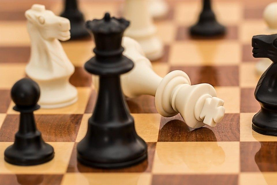 Чемпионат по шахматам пройдет в Щукинском парке