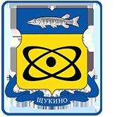 Медсестра ГКБ № 52 стала Почетным донором Москвы